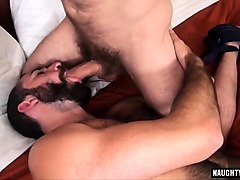 hairy bear threesome with creampie